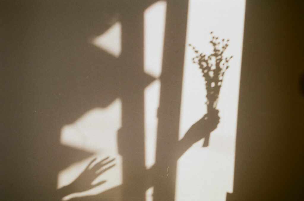 Shadows of flowers and hand against a wall symbolizing shadow work